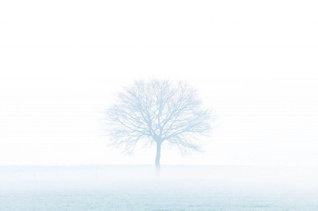 Alleen in een mist van sneeuw